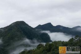 绿春县撬动绿色资源推动高质量发展