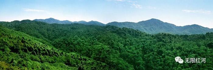 州林业和草原局:争做生态文明建设排头兵