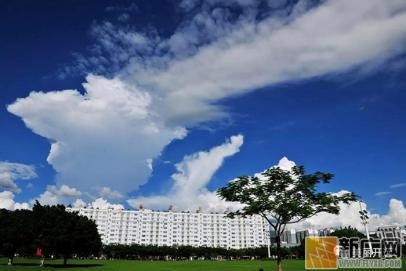 开远的夏天,总有那么一刻想融化在云里