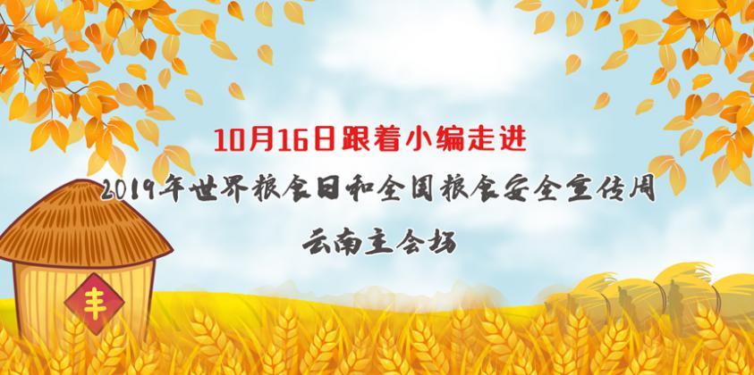 走进2019年世界粮食日和全国粮食安全宣传周云南省主会场