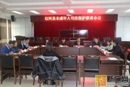 红河县召开未成年人司法保护联席会