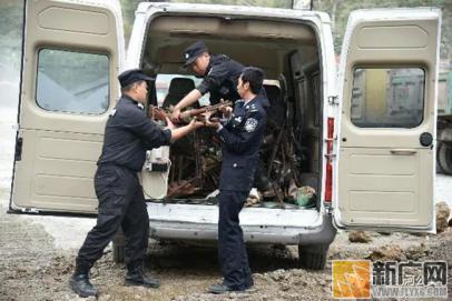 红河县公安局集中销毁一批非法枪爆物品
