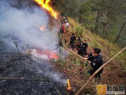 金平普角边境派出所成功扑灭一起山林大火