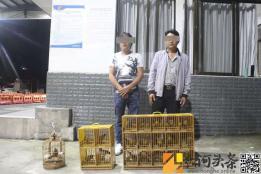 云南红河:巡逻中查获贩卖野生鸟类案 解救画眉鸟共20只