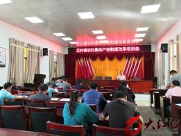 蒙自市芷村镇农村集体经济产权制度改革有序推进